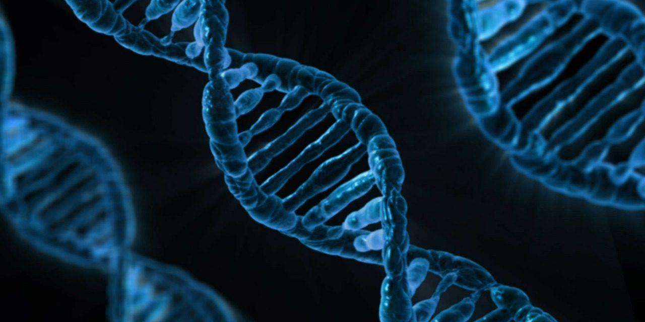 Dieta perfectă ți-e scrisă în ADN